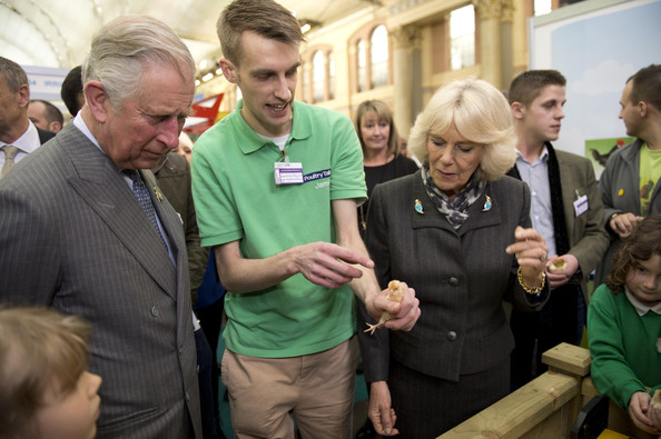 Camilla, Duchess of Cornwall talks to Jamie Toms from Poultry Talk, as she holds a 3 day-old Pekin Bantam chick and Prince Charles, Prince of Wales looks on during The Edible Garden Show at Alexandra Palace on March 28, 2014 in London, England.