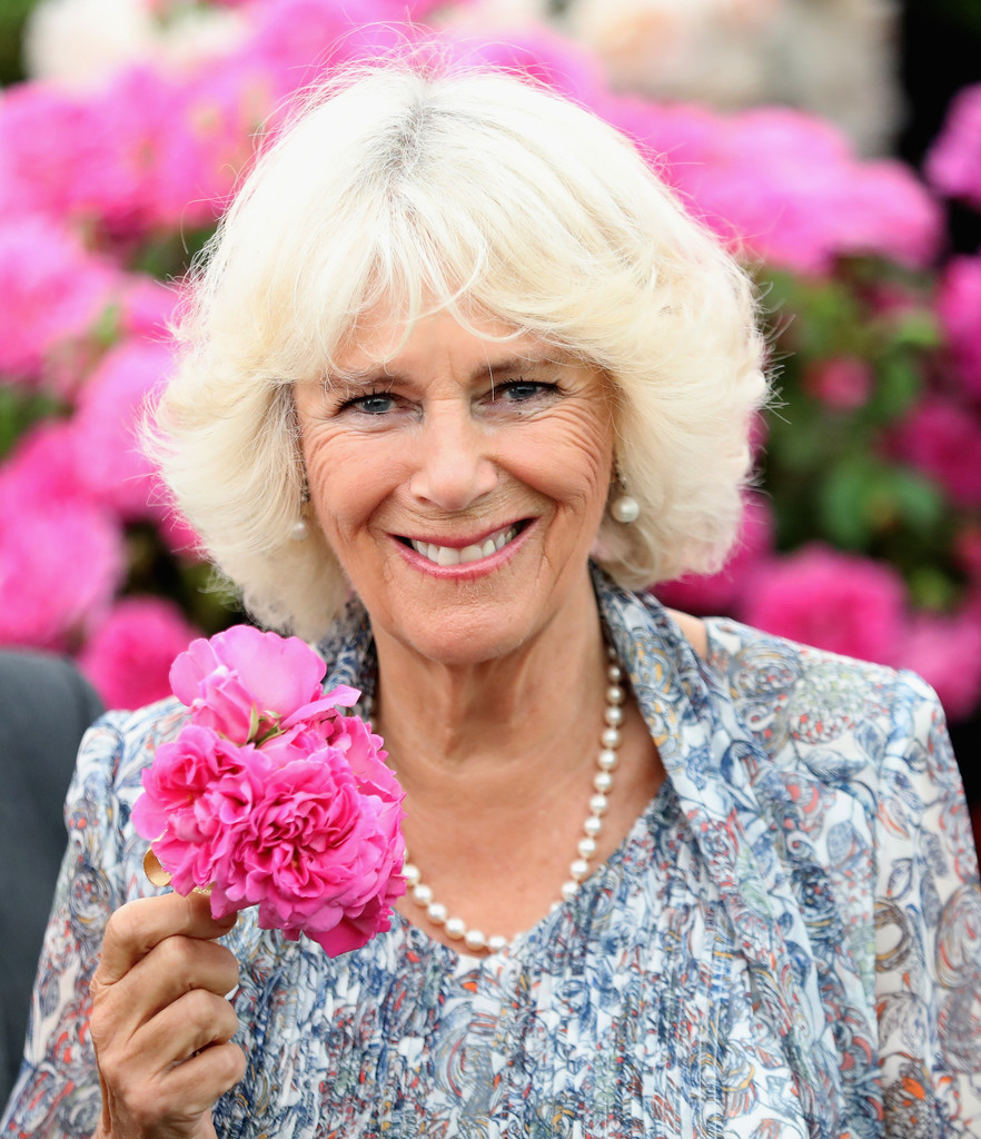 Camilla Parker Bowles In The Prince Of Wales & Duchess Of. Garnet Side Stone Wedding Rings. Modern Marriage Wedding Rings. Turquoise Accent Wedding Rings. Art Deco Rings. Celebrity Blue Diamond Engagement Rings. Nfl Wedding Rings. Modern Gold Rings. Colorful Stone Engagement Rings