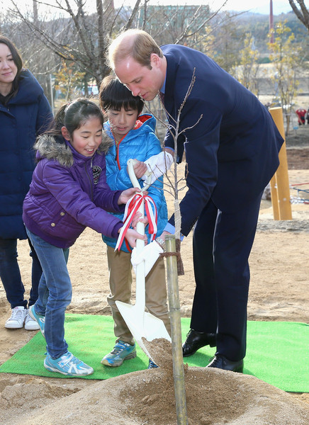 Prince William Prince William, Duke of Cambridge plants a tree as he visits Smile Kid's Park on February 28, 2015 in Koriyama, Japan. The Duke of Cambridge is visiting Japan from February 26th to March 1st 2015.