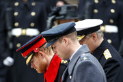 Britain's Prince Harry (L), Britain's Prince William, Duke of Cambridge (C) and Britain's Prince Andrew, Duke of York lay a wreath during the Remembrance Sunday ceremony at the Cenotaph on Whitehall in central London, on November 12, 2017..Services are held annually across Commonwealth countries during Remembrance Day to commemorate servicemen and women who have fallen in the line of duty since World War I. / AFP PHOTO / Tolga AKMEN