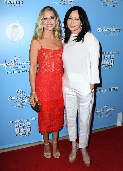 9th Annual American Humane Hero Dog Awards - Arrivals [clothing,red,shoulder,cocktail dress,dress,premiere,carpet,fashion,red carpet,event,arrivals,shannen doherty,sarah michelle gellar,american humane hero dog awards,beverly hills,california,the beverly hilton hotel,annual american humane hero dog awards]