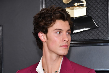Shawn Mendes 62nd Annual GRAMMY Awards - Arrivals