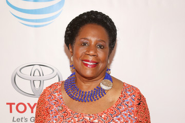Sheila Jackson Lee 48th NAACP Image Awards -  Red Carpet