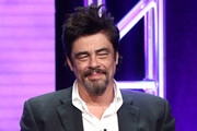 Benicio Del Toro Photos Photo