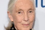 Jane Goodall Photos - 182 of 364 Photo