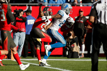 Theo Riddick Detroit Lions v Tampa Bay Buccaneers