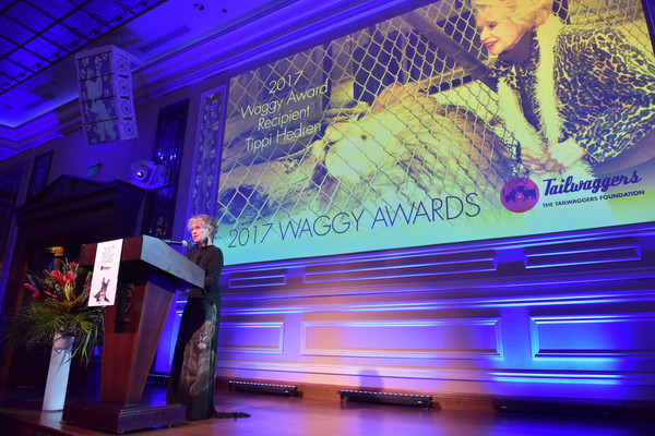 The Tailwaggers Foundation, 2017 Waggy Awards