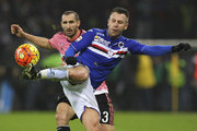 Antonio Cassano and Giorgio Chiellini Photos Photo