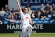 James Tomlinson of Hampshire celebrates taking the wicket of  Tim Bresnan of Yorkshire during day two of the LV County Championship Division One match between Yorkshire and Hampshire at Headingley on May 11, 2015 in Leeds, England.
