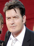 Charlie Sheen Brooke Mueller married