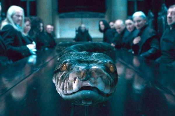 harry potter nagini