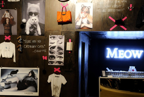 Is Glamour Magazine's Cat Fashion Concept Store the Best Thing That Ever Happened on Earth? Maybe.