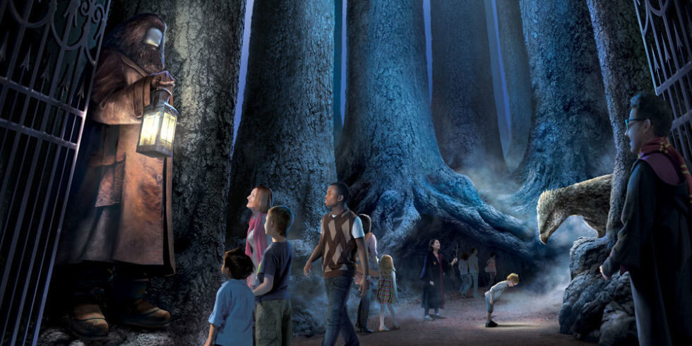 You'll Soon Be Able To Explore 'Harry Potter's Forbidden Forest in Real Life