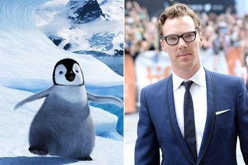 The Internet Just Discovered Benedict Cumberbatch Can't Say the Word 'Penguin'