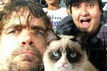 The Peter Dinklage-Grumpy Cat Selfie Is the Greatest Fake Picture Ever