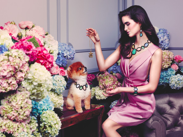 Pomeranian Alert! Tous' Newest Supermodel is Furry and Four-Legged