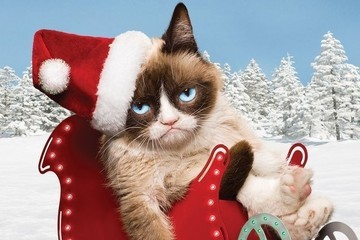 5 Reasons Why You Should Waste 2 Hours of Your Life Watching 'Grumpy Cat's Worst Christmas Ever'