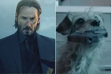 Somebody Please Make This 'John Wick' Parody into an Actual Movie