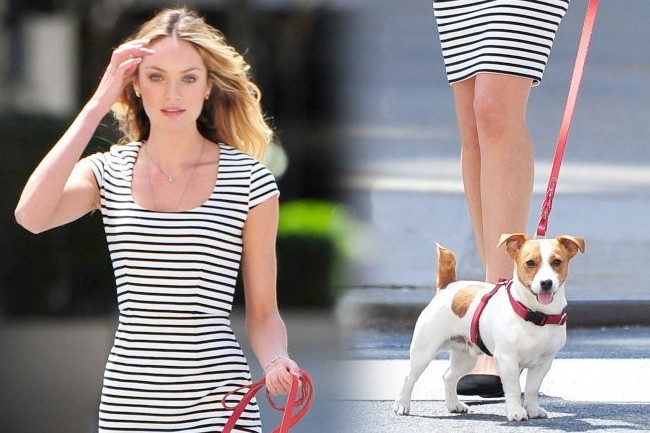 Candice Swanepoel Poses With a Puppy, Cuteness Ensues