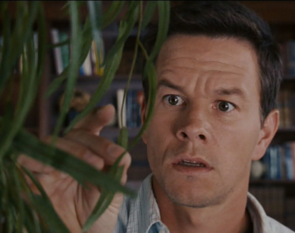 All Plant Life on Earth in 'The Happening'