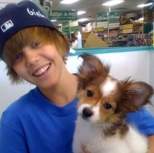 justin bieber was cute and innocent the best celebrity tbt