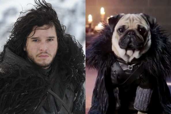 'Game of Thrones' Characters and Their Pug Look-Alikes ... Pug Game Of Thrones
