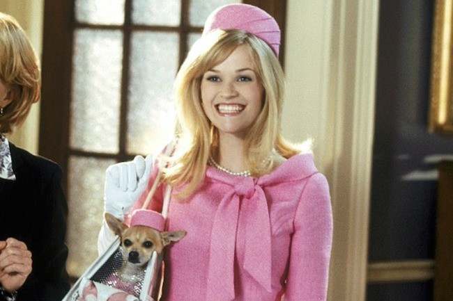 reese witherspoon is 39 thinking 39 about making another 39 legally blonde 39 movie reese witherspoon. Black Bedroom Furniture Sets. Home Design Ideas