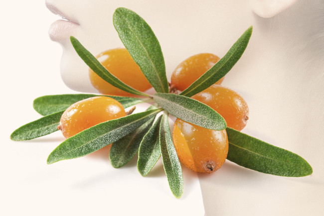 Why You Should Try Products With Sea Buckthorn