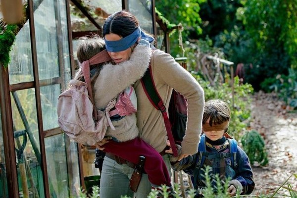 Netflix film Bird Box's plot just doesn't fly