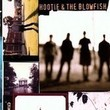Hootie & the Blowfish's 'Cracked Rear View'