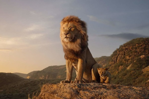 Which Lion King 2019 Character Are You Quiz Zimbio