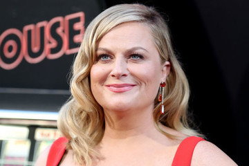 Amy Poehler Just Gave The Best Damn Q&A Of The Year