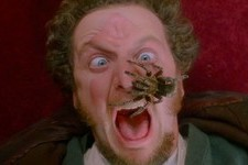 'Home Alone's Daniel Stern Recreated His Famous Tarantula Scene