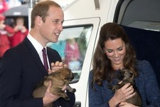 The Royal Tour Continues — This Time with Puppies!