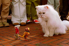 Can You Match the Cat to the Movie?
