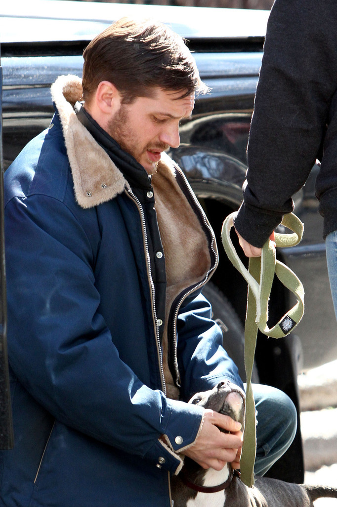 http://www4.pictures.zimbio.com/pc/Tom+Hardy+Animal+Rescue+Films+Brooklyn+rh8Y3onCTh8x.jpg