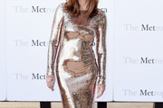 Dana Delany Sequin Dress
