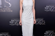 Katherine Waterston Evening Dress