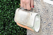 Rose Byrne Metallic Purse
