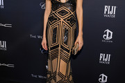 Petra Nemcova Beaded Dress
