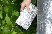 Judith Light Metallic Clutch