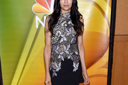 Famke Janssen Embroidered Dress