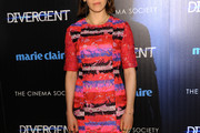 Zosia Mamet Print Dress