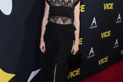 Alison Pill Evening Dress