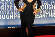 Christina Aguilera Mermaid Gown